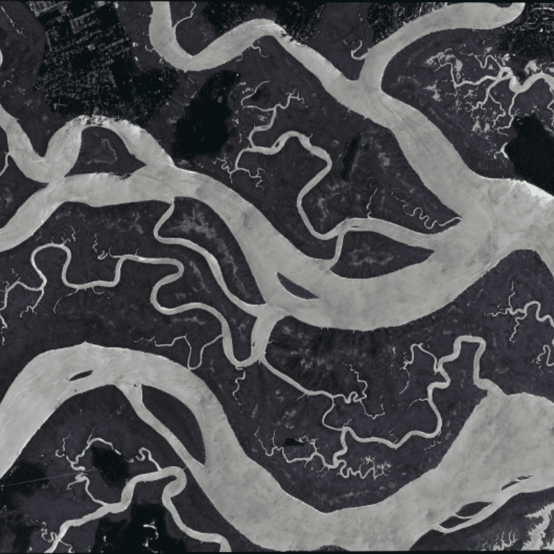rivers from above: fractal patterns in nature