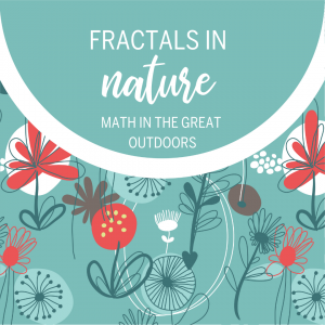 fractals in nature, math fractals for kids