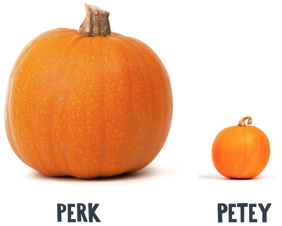 Perk and Petey Halloween math activity to do at home